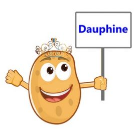 definition humoristique pomme dauphine
