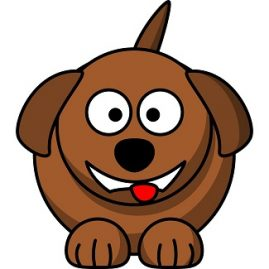 expressions avec chien