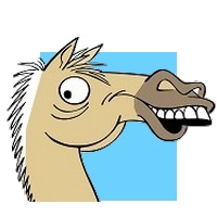 expression cheval