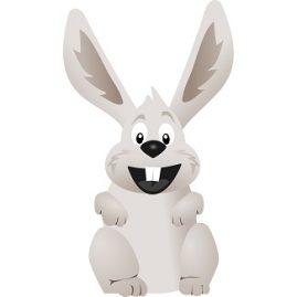 expression avec le mot lapin