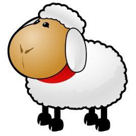 expression mouton
