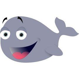 expression avec mammifere marin