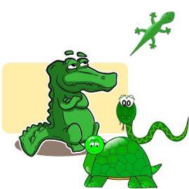 expression serpent et reptiles