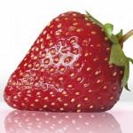 expression fraise sur le site savour.eu