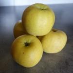 les fruits dans les expressions - la pomme dans les expressions