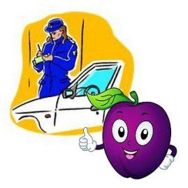 """illustration de l'expression """"Prendre une prune"""" sur savour.eu"""