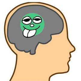 avoir un petit pois dans la tête