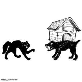 s'entendre comme chien et chat