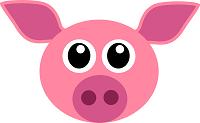 expression avec cochon