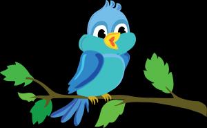 expression oiseaux