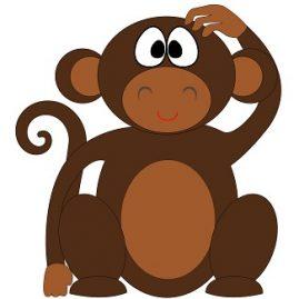 expression avec le mot singe