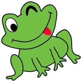 expression avec grenouille