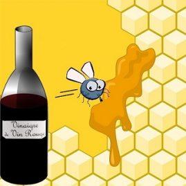 On n'attrape pas les mouches avec du vinaigre