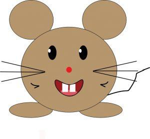 expression souris et rat