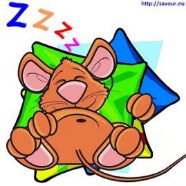 dormir comme un loir