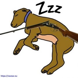 dormir en chien de fusil