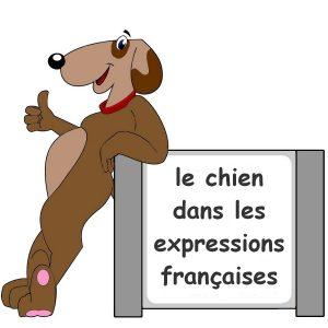 chien dans les expressions françaises